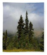 Hurricane Ridge Beauty Fleece Blanket