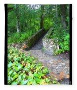 Ichetucknee Stairway Fleece Blanket