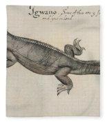 Iguana, 1585 Fleece Blanket