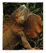 Iguana Costa Rica Fleece Blanket