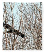 Immature Bald Eagle Flying Fleece Blanket
