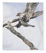 Immature Eagle At Play Fleece Blanket
