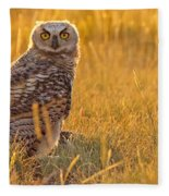 Immature Great Horned Owl Backlit Fleece Blanket