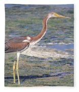 Immature Tricolored Heron Standing At High Tide Fleece Blanket