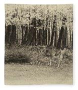 In A Yellow Wood Antique Fleece Blanket