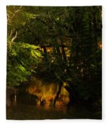 In Golden Moments Of Reflection Fleece Blanket