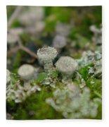 In The Land Of Little Mushrooms  Fleece Blanket
