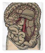 Inferior Mesenteric Artery And The Aorta Fleece Blanket