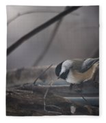 Inquisitive Fleece Blanket