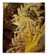 Inside The Sago Palm Fleece Blanket