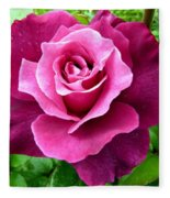 Intrigue Rose Fleece Blanket