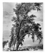 Iowa: Council Bluffs, 1855 Fleece Blanket