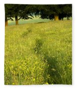 Ireland Trail Through Buttercup Meadow Fleece Blanket