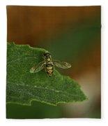 Iridescent Fly 1 Fleece Blanket