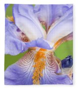 Iris Close Up Blue And Gold Fleece Blanket