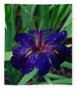 Iris With Rain Drops Fleece Blanket