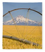 Irrigation Pipe In Wheat Field With Fleece Blanket