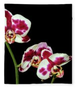 Isolated Orchids Fleece Blanket