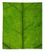Ivy Leaf Fleece Blanket