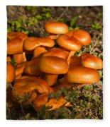Jack Olantern Mushrooms 30 Fleece Blanket