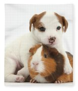 Jack Russell Terrier Puppy And Guinea Fleece Blanket