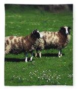 Jacob Sheep Fleece Blanket