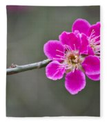 Japanese Flowering Apricot. Fleece Blanket