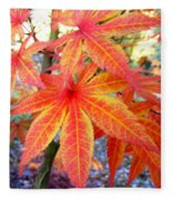 Japanese Maple Leaves 13 In The Fall Fleece Blanket