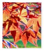 Japanese Maple Leaves 6 In The Fall Fleece Blanket