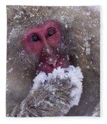 Japanese Snow Monkey Fleece Blanket
