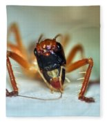 Jiminy Cricket Fleece Blanket