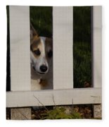 Johnny And The Picket Fence Fleece Blanket