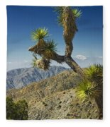 Joshua Trees Number 357 Fleece Blanket