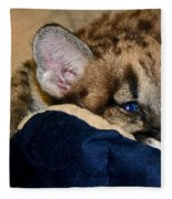 Just A Big Kitten Fleece Blanket
