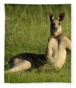 Kangaroo Playing It Cool Fleece Blanket