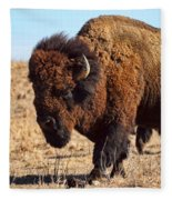 Kansas Buffalo Fleece Blanket