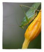 Katydid Fleece Blanket