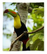 Keel-billed Toucan Fleece Blanket