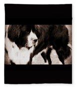 Keeper Of The Yard Fleece Blanket