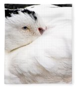 Keeping Warm Fleece Blanket