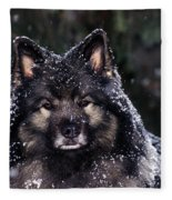 Keeshond Dog, Winnipeg, Manitoba Fleece Blanket
