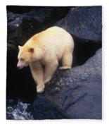 Kermode Bear On Boulder Hunting Salmon Fleece Blanket