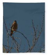 Kestrel  Fleece Blanket