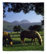 Killarney,co Kerry,irelandtwo Horses Fleece Blanket