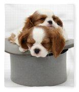 King Charles Spaniel Puppies Fleece Blanket