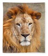 King Of Beasts Portrait Of A Lion Fleece Blanket