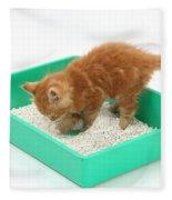 Kitten And Litter Tray Fleece Blanket