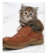 Kitten In Shoe Fleece Blanket