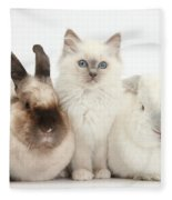 Kitten With Rabbits Fleece Blanket