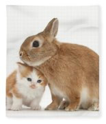 Kitten With Sandy Netherland Fleece Blanket